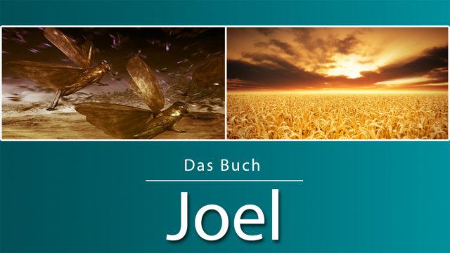 Image of Das Buch Joel (Predigtserie)